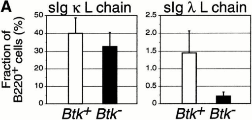 Decreased λ L chain usage in in vitro–generated Btk− B cells and in Btk− pre-B cells in vivo. (A) Fraction of B220+ cells that express κ and λ L chain on the cell surface in bone marrow cultures from Btk+ and Btk− mice (n = 10). Cells were grown in IL-7 for 5 d and subsequently recultured on S17 stroma in the absence of IL-7 for 48 h. Cells were stained with mAbs specific for B220, IgM, IgD, and either κ or λ. (B) Fraction of sIgM−sIgD−B220+ cells that express L chains in their cytoplasm in the bone marrow of Btk+ and Btk− mice (n = 8).