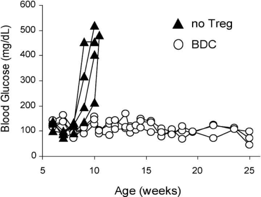 Prevention of autoimmune diabetes in NOD.CD28−/− mice with BDC2.5-expanded Tregs. 5-wk-old prediabetic NOD.CD28−/− mice were injected with 5 × 105 BDC2.5-expanded Tregs (n = 3) or left untreated (n = 4). The development of diabetes was monitored and blood glucose levels of individual mice were plotted. Results are representative of at least five independent experiments.