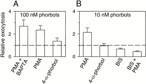 PMA acts by stimulating PKC. (A) Relative exocytosis during 3-min treatments with PMA (100 nM) or its structurally related inactive analogue, 4-α-phorbol (100 nM). Some cells (PMA + BAPTA) were preincubated with 50 μM of BAPTA-AM for 1 h. (B) Same treatments as in A, but with a lower concentration (10 nM) of PMA or 4-α-phorbol. Some cells were treated with the PKC inhibitor, BIS (500 nM). The rate of exocytosis in BIS was measured during the last 2 min of the 5-min application of the inhibitor. In both cases, the rate of exocytosis was compared with that in control condition. Then, PMA (10 nM) was added (BIS + PMA). Cells were loaded with dopamine.