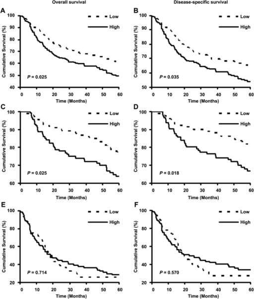 Cytoplasmic Skp2 expression is associated with five-year survival of all melanoma and primary melanoma patients.Kaplan-Meier curves analyses for the correlation between cytoplasmic Skp2 expression and overall or disease-specific five-year survival in all melanoma patients (A,B), primary melanoma patients (C,D) and metastatic melanoma patients (E,F).