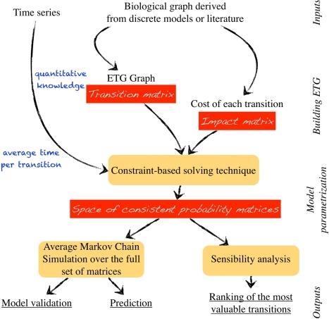 Validating markov chain model