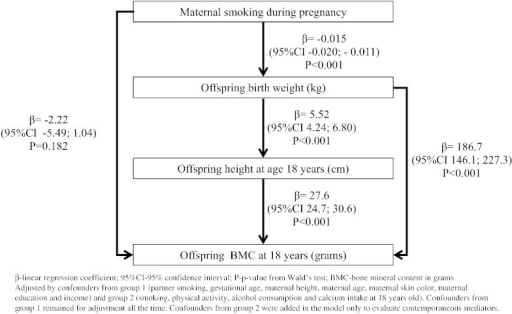 Overall association between maternal smoking during pregnancy, offspring birth weight, offspring height and bone mineral content at age 18 in females (N = 1563). The 1993 Pelotas Birth Cohort.