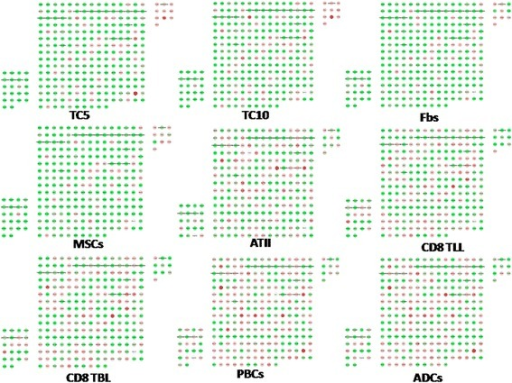 TCs-specific genes in chromosome 18 were selected as a specific group. Each node stands for each given gene. The upper right rectangular group represents up-regulated TCs-specific genes while the bottom left one represents down-regulated TCs-specific genes. Red nodes show genes up-regulated while green nodes show genes down-regulated.