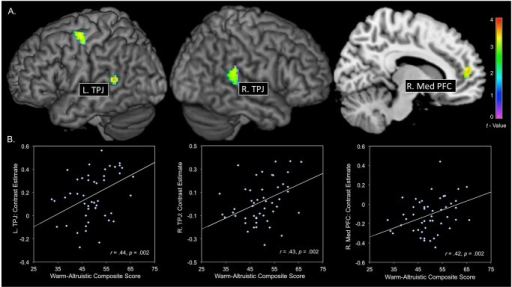 A. Results of whole brain analysis, within warm-altruistic composite scores predicting brain activity during emotional perspective taking > shape matching.A total of four statistically significant clusters are reported (bilateral TPJ, right medial PFC, and left premotor cortex). B. Data from each cluster within the empathy/theory of mind network are extracted (y-axis) and plotted against altruism-warmth composite scores (x-axis). TPJ: temporoparietal junction; PFC: prefrontal cortex; R: right; L: Left.