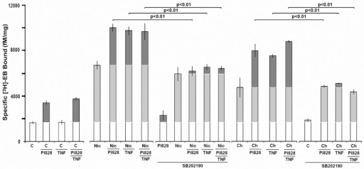 TNFα enhancement and PI3Kβ inhibition of upregulation both act through p38Mapk.Experiments similar to those in Fig 3 were performed with the addition of treatment of cells with nicotine (Nic) or choline (Ch) and each with PI828, TNFα or both as indicated. At 24 hours post-treatment specific [3H]Eb binding by crude cell membranes was measured. Each bar is the average of no less than 3 independent experiments and error bars = +/- SEM. The significance values (P) are calculated from Student's t-test of the indicated pairing. Upregulation is indicated in the light grey and enhancement of upregulation is in dark grey.