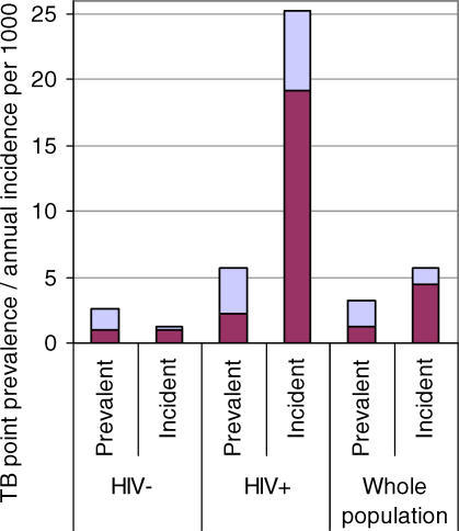 Point Prevalence and Annual Incidence Rates for Smear-Positive and Culture-Positive TB, According to HIV StatusColumns are divided into smear-positive (dark portion) and smear-negative culture-positive TB (light portion).