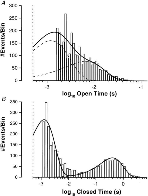 Kinetics of the BLM K+ channel. (A) Open-time histogram for the BLM K+ channel in a cell-attached patch at −60 mV with the time intervals logarithmically binned (Sigworth and Sine, 1987). The data were fitted with two probability density functions (dashed lines) to give the overall fit (solid line), yielding time constants of τo1 = 0.78 ms (78%) and τo2 = 4.7 ms (22%). Based on the bandwidth of the recording system, the data and the fit were cutoff at 500 μs (vertical dotted line). (B) Closed-time histogram for the BLM K+ channel in a cell-attached patch at −60 mV with the time intervals logarithmically binned. The data were fitted with two probability density functions (dashed lines) to give the overall fit (solid line), yielding time constants of τc1 = 1.27 ms (74%) and τc2 = 397 ms (26%). Based on the bandwidth of the recording system, the data and the fit were cutoff at 500 μs (dotted vertical line).