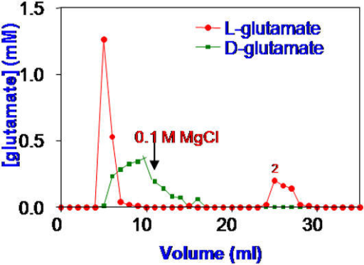 Elution of 20 mM of each of KD-glutamate and KL-glutamate on a Dowex cation exchange resin in its Na+ form.