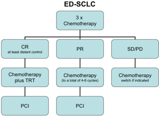 Suggested treatment strategy for ED-SCLC. Based on recent and older, hardly considered data [2,5] there could be three different treatment strategies according to initial response to chemotherapy: Chemotherapy plus TRT (simultaneously with the 4th cycle) and PCI for good responders achieving complete remission at least at distant levels; chemotherapy and PCI for patients having any response; second line chemotherapy or best supportive care for stable or progressive disease.