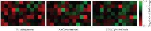 Effect of NAC or L-NAC pretreatment on the magnitude of gene expression in PQ-challenged cells.  RNA was extracted from cells challenged with 0 or 0.25 mM PQ for 4 h following pretreatment with 5.0 mM NAC- or L-NAC-containing media and analyzed via quantitative reverse-transcription PCR using a gene array.  The magnitude of expression of each gene is expressed on a scale ranging from minimal (intense green) to maximal (intense red) expression (n = 3 independent experiments).