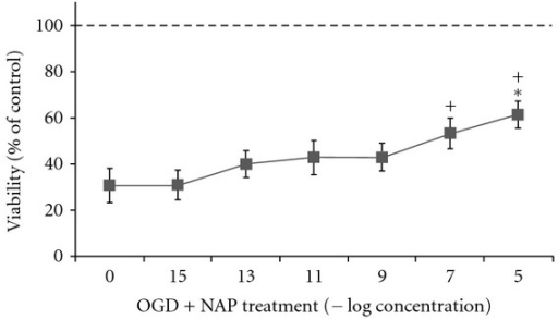 NAP protects from cell death in a dose dependent manner following 2 hours of OGD insult, but not after additional 24 hours reperfusion. Primary neuronal cultures (5-6DIV) were subjected to 2 h of ischemic insult. Cell viability was evaluated using MTS viability assay. Data was normalized to % of control. Results are shown as mean ± SE. *Significantly different from OGD with no NAP, OGD + NAP10−15 M, OGD + NAP 10−13 M, OGD+NAP 10−11 M (3 independent experiments are summarized, ANOVA, with post hoc Scheffe, significant difference considered to be P ≤ 0.05). Using LSD post hoc, NAP 10−5 M (+), 10−7 M are significantly different from the OGD group (P < 0.05).