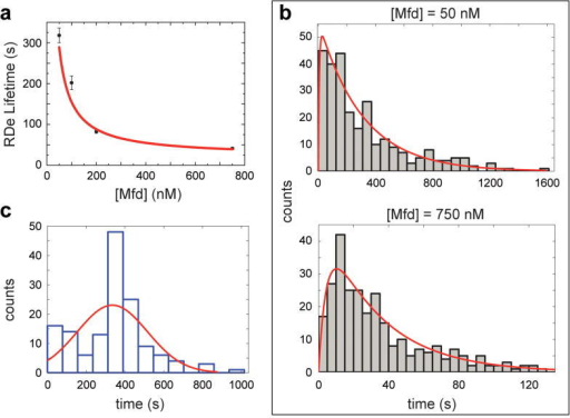 Kinetic characterization of the action of Mfd on RDe(A) Mean of RDe lifetime <t1> vs. Mfd concentration, and fit to Michaelis-Menten model (error bars = S.E.M). (B) Full distributions of t1 for [Mfd] = 50 nM (n = 273 events) and [Mfd] = 750 nM (n=281 events). Red curves: global fits with a difference-of-two-exponentials according to the single-molecule Michaelis-Menten model (see Supplementary Materials and Supplementary Fig. S9). (C) Distribution of reaction intermediate lifetime t2 (n = 146 events). Red curve, fit with a normal distribution model with a mean of 335 ± 3 s and a standard deviation of 181 seconds. Experiments were performed on DNA supercoiled by +4 turns.