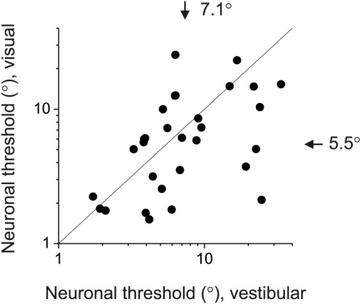 Comparison of neuronal sensitivity between the visual (ordinate) and vestibular (abscissa) stimulus conditions for 30 congruent cells.Arrows and numbers indicate geometric mean values. Overall, visual responses were somewhat more sensitive than vestibular responses, although the animals' behavioral performance was similar between conditions.DOI:http://dx.doi.org/10.7554/eLife.02670.017