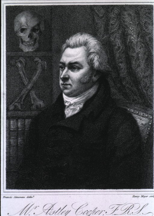 <p>Seated, face to right, skull and bones by right shoulder, in background.</p>