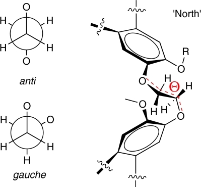 Ethylenedioxy linker of cryptophane-A. Both anti and gauche conformations are observed in all crystal structures of cryptophane host–guest complexes.