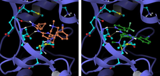 Example aminopyrazole 15c (left) and aminopyridine 16d (right) head group compounds docked into the PknB active site.