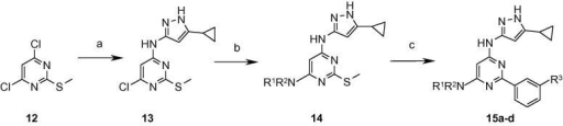 Reagents and conditions: (a) 3-Amino-5-cyclopropylpyrazole, Et3N, NaI, DMA, microwave, 150 °C; (b) R1R2NH, n-BuOH, microwave, 170 °C; (c) R3PhB(OH)2, Pd(PPh3)4, copper(I) thiophene carboxylate, dioxane, microwave, 150 °C.