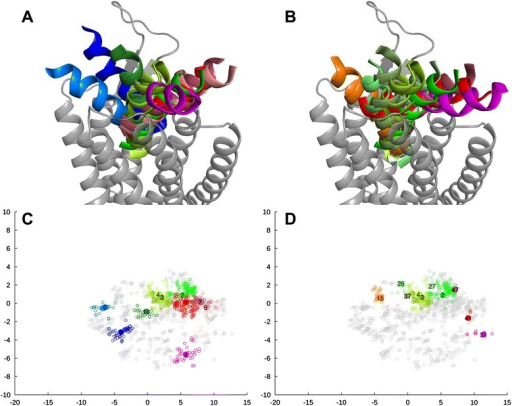 3D-representations for the docking pose clusters and scatter plots from multidimensional scaling, NTSR1-based model. (A, C) Ten largest clusters; (B, D) Ten top-scoring clusters. The view and color coding is as in Figure 4.
