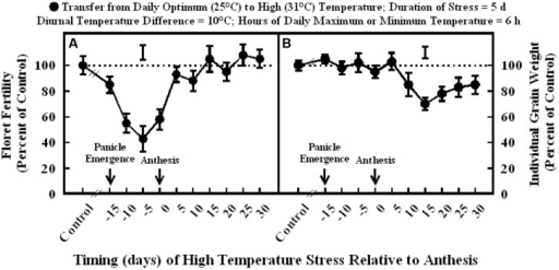 Impact of high temperature stress (36/26°C daytime maximum/nighttime minimum temperature, for 5 days) at different times relative to anthesis on (A) floret fertility, and (B) individual grain weight. Each datum is expressed as percentage of control at optimum temperature (30/20°C, daytime maximum/nighttime minimum temperature) and shown with ± SE. Vertical bars above the lines denote LSD for comparison of treatment means. The dotted line provides reference to control means.