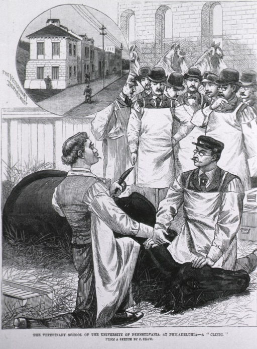 <p>Clinic scene from sketch by J. Shaw.  Interior scene showing operation about to begin on a horse.  Small vignette of exterior of the school.</p>