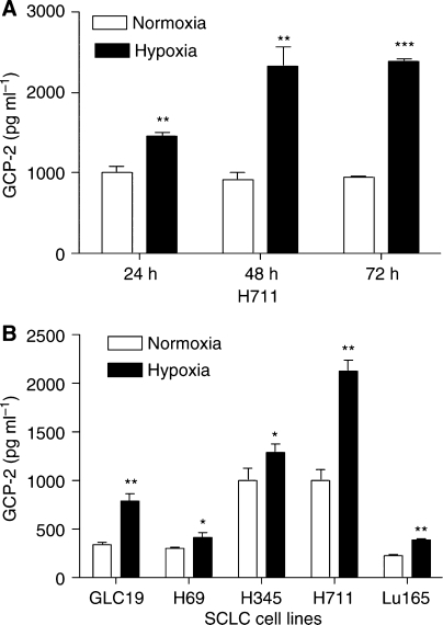Upregulation of GCP-2 by hypoxia. (A) H711 cells were cultured under normoxia and hypoxia (0.5% O2) for 24, 48 and 72 h. Granulocyte chemotactic protein-2 measured by ELISA was significantly increased by 46% (P<0.01) at 24 h, 152% (P<0.01) at 48 h and 153% (P<0.001) at 72 h. (B) The effects of 48 h hypoxia on GCP-2 production in a panel of SCLC cell lines. Granulocyte chemotactic protein-2 production measured by ELISA was significantly upregulated (range from 34% in H69 to 129% increase in GLC19) in all tested SCLC cell lines. Each bar is the mean±s.e.m. of three determinations from two independent experiments.
