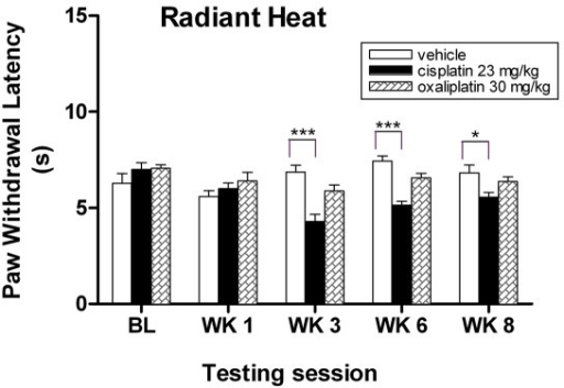 Cisplatin-treated mice exhibit thermal hyperalgesia to radiant heat assay. Cisplatin-treated mice show decreased response withdrawal latencies to noxious thermal stimuli at weeks 3, 6, and 8. Data represent the mean ± S.EM of 7 mice, *P < 0.05; ***P < 0.001, two-way ANOVA followed with post hoc analysis.