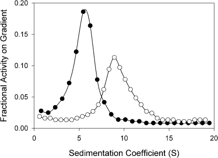 Velocity sedimentation analysis of the molecular forms of recombinant O. latipes BChE.HIS extracts from COS-7 cells transfected with cDNA for BChE were sedimented on gradients prepared in presence (•) and absence (○) of Triton X-100 as described in Materials and Methods. Data are presented as the fraction of total BChE activity on the gradient as a function of sedimentation coefficient.