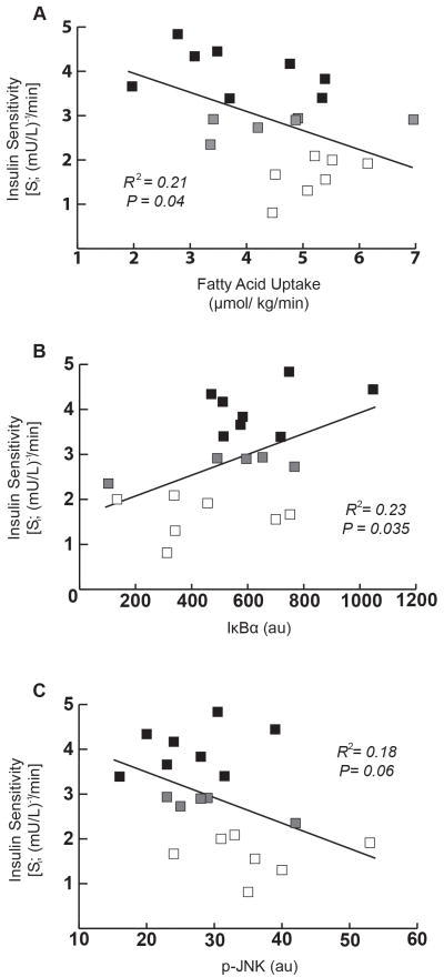 Correlational analyses for insulin sensitivity with fatty acid uptake and inflammatory markers in skeletal muscle(A) Correlation between insulin sensitivity index (Si) and fatty acid uptake. (B) Correlation between Si and IκB-α abundance. (C) Correlation between Si and p-JNK abundance. All correlational analyses were performed using the entire subject cohort (n=21) [LOW-Si (n=7; white square □), NORM- Si (n=8; black square ■) and participants that did not fall into either category (n=6; grey square  ).