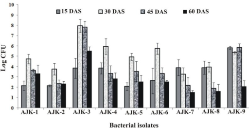 Population density of different bacteria inoculated to wheat at different time intervals under axenic conditions. The error bars represent the least significant difference among treatments at P≤ 0.05.