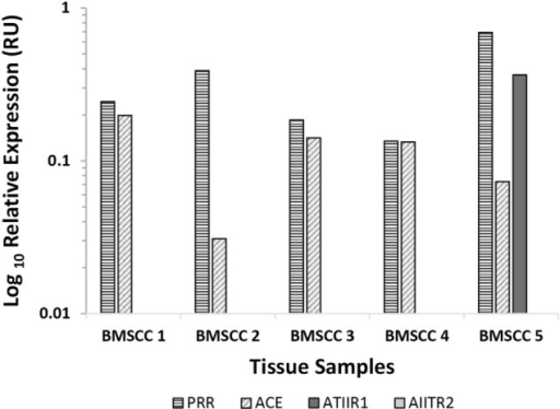 Relative expression of mRNA transcripts of the components of the renin–angiotensin system in five moderately differentiated buccal mucosal squamous cell carcinoma samples. Expression is depicted in relative units (RU) as a ratio to the GUSB housekeeper. Transcriptional profiling confirmed the presence of PRR and ACE mRNA in all five samples and ATIIR1 in one sample, but ATIIR2 mRNA was below the detectable level within all five samples.