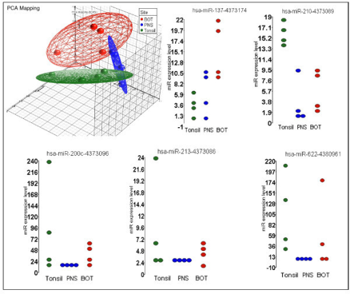 Principal component analysis based on the differential expression levels of 5 miRs (miR-137, miR-210, miR-200c, miR-213, and miR-622). These miRs showed the most significant differential expression according to each tumor site. The dot plots represent the relative expression levels of each miR across all sites.