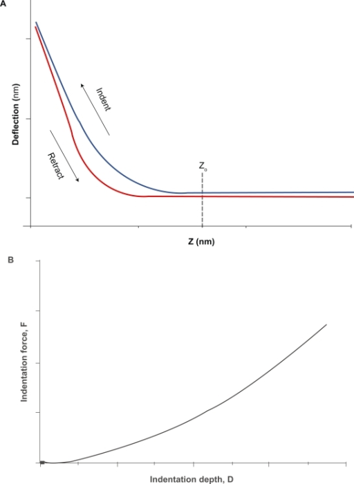 The AFM cell indentation experiment. A) The force curve obtained by measurements of cantilever deflection versus z-position during advancement and retraction of the probe. This curve provides information about the viscoelastic properties of the cell. Once the raw force curve is obtained and the contact point (Z0) identified, cell mechanical properties are obtained from the analysis of the curve of indentation force (F = k × h) versus depth (D = (Z − Z0) − h) B).