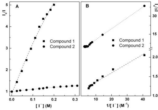 Stern-Volmer plots for quenching with iodide ion of compounds 1 and 2 for [DNA]/[compound] = 200 (A) and corresponding modified Stern-Volmer plots (B).
