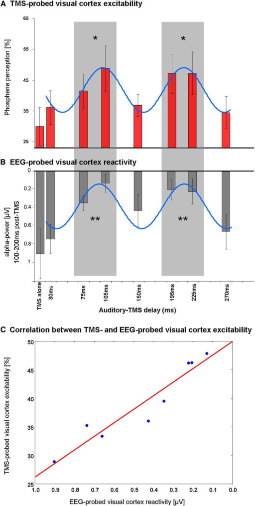 Results for TMS-EEG Trials in Experiment 2(A) TMS-probed visual cortex excitability as indexed by rate of phosphene perception, for the eight conditions (±SEM) relative to a preceding sound (baseline with no sound, plus seven delays after sound). Note the cyclical pattern, with significantly more phosphene reports arising within the two shaded time windows (significantly greater than baseline = no sound, ∗p < 0.05 Bonferroni corrected t tests).(B) EEG-probed visual cortex reactivity to the TMS pulses (±SEM). Visual cortex reactivity is estimated by alpha-power changes in a post-TMS time window (TMS locked), as a function of delay relative to critical sound. High reactivity is indicated by low alpha values and low reactivity by high alpha values (y axis; note the inverse scaling with low alpha values plotted upwards and high values downwards). The shaded areas (75–105 ms and 195–225 ms delays after sound) represent windows of significantly enhanced visual cortex reactivity (reduced parieto-occipital alpha activity) after a TMS pulse (i.e., reactivity significantly above baseline, ∗∗p < 0.015 Bonferroni corrected t tests). Note the periodicity in visual cortex reactivity that is once again found to cycle at around ∼10Hz.(C) Scatterplot showing the close relation between rate of phosphene perception and visual cortex reactivity for each TMS condition in experiment 2.