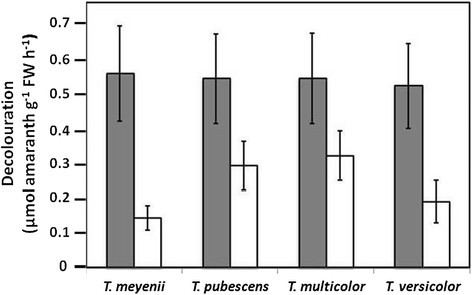 Rate of amaranth decolouration in the presence and absence of malonate by fourTrametesspecies grown in low-N Kirk's. Presence and absence of 50 μM sodium malonate. All values are means ± S.D. (n = 5).