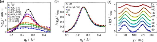 One-dimensional scattering profiles of hydrodynamically focusedflowing 5CB. The coordinates (qh, ql) and angle χ in reciprocal space aredefined in Figure 2a. (a) qh scans integrated over different ql intervals in the center of the channel (z ≈ 0 μm) for a hydrodynamic focusing experiment. Theflow rate of 5CB (middle channel) is Qm = 3 μL/min, and the ratio rQ = 2Qs/Qm of the combined side fluids (Triton X-100 2% solutions) with theinner fluid is rQ = 8.(b) Comparison between qh scans (integratedover ql = −0.036 to 0.036 Å–1) in the system with no hydrodynamic focusing (black, Q = 3 μL/min) and the hydrodynamic focusing system(Q5CB = 3 μL/min, rQ = 8). All hydrodynamic focusing patternsshow a slight shift in the peak position to lower angles (Δq ≈ 0.006 Å–1), which mayindicate a slight penetration/contamination of Triton or Triton/waterparticles within the 5CB sheet. Nonetheless, given the very smallshift in the peak, both the contamination and resulting structuralchanges should be minimal. (c) χ scans and respective double-Lorentzianfittings for a hydrodynamic focusing run with Qm = 3 μL/min and rQ = 8. Data is normalized and displaced along the ordinate axisfor ease of visualization. In all panels (a–c), circles constitutescattering data and lines are Lorentzian fits.