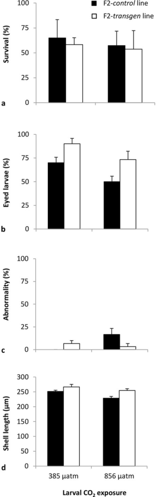 The response of F2-control and F2-transgen Saccostrea glomerata larvae to ambient and elevated CO2.Percentage survival of larvae after 19 d (a), percentage eyed larvae after 19 d (b), percentage abnormality after 1 d (c), shell length after 19 d (d) of exposure to the CO2 treatments (mean ± SE) (24°C, salinity 34.5 ppt).