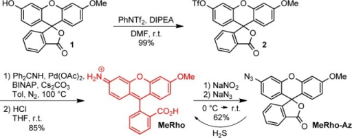 Synthesis and H2S-Mediated Activation of MeRho-Az