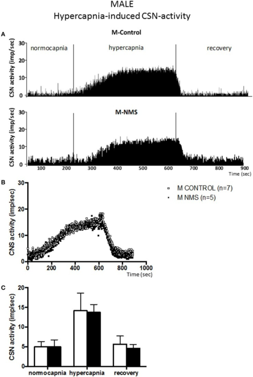 Neonatal maternal separation (NMS) does not alter the hypercapnic carotid sinus nerve (CSN) response to hypercapnia in male rats. (A) Original recordings comparing CSN activity from ex vivo preparations of perfused carotid body/CSN from control and NMS males under hyperoxia (FiO2 = 0.95), hypercapnia (FiCO2 = 0.30) and hyperoxia after hypercapnia (recovery). (B) Comparison of the mean carotid sinus nerve activity (imp/sec) over the course of the hypercapnic protocol between carotid bodies from control (open squares; n = 7) and NMS rats (black squares; n = 7). Hypercapnia begins at T = 0 and is maintained until T = 500 s (end of plateau phase), followed by hyperoxic recovery; each data point represents the mean value on a second by second basis. (C) Histograms comparing mean CSN activity for each specific experimental condition between control (white bars; n = 7) and NMS (black bars; n = 7) male rats. Data are reported as means ± SD.