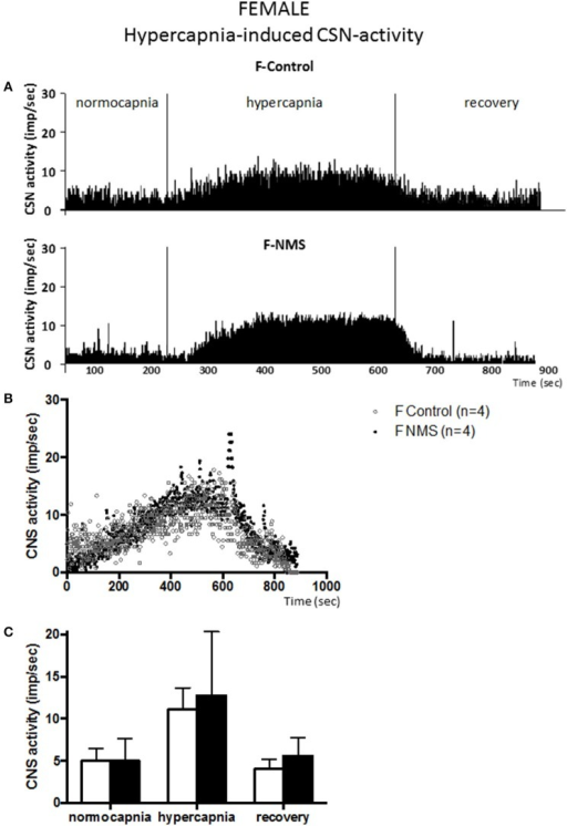Neonatal maternal separation (NMS) does not alter the hypercapnic carotid sinus nerve (CSN) response to hypercapnia in female rats. (A) Original recordings comparing CSN activity from ex vivo preparations of perfused carotid body/CSN from control and NMS females under hyperoxia (FiO2 = 0.95), hypercapnia (FiCO2 = 0.30) and hyperoxia after hypoxia (recovery). (B) Comparison of the mean carotid sinus nerve activity (imp/sec) over the course of the hypercapnic protocol between carotid bodies from control (open squares; n = 4) and NMS rats (black squares; n = 4). Hypercapnia begins at T = 0 and is maintained until T = 500 s (end of plateau phase), followed by hyperoxic recovery; each data point represents the mean value on a second by second basis. (C) Histograms comparing mean CSN activity for each specific experimental condition between control (white bars; n = 4) and NMS (black bars; n = 4) female rats. Data are reported as means ± SD.