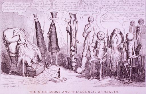 <p>A sick goose is sitting in a chair; a line of animated patent medicine containers, a water pump, and a gouty figure runs from left to right; in the foreground is a tiny figure of a man standing on a book titled Homeopathy; each offers a different cure.</p>