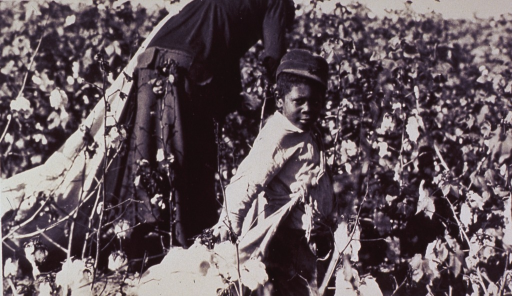 <p>A young migrant worker and his mother in a cotton field.</p>