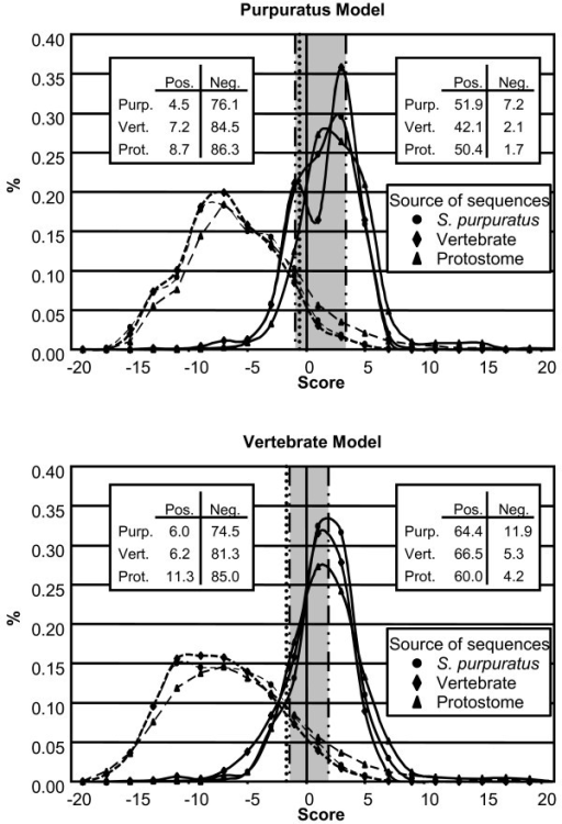 Histograms to evaluate the models. Genes isolated from S. purpuratus (circles), vertebrates (diamonds), and protostomes (triangles) were collected and analyzed using the Purpuratus (A) and Vertebrate (B) models. Histograms of the known positive (solid lines) and negative (dashed lines) donor splice sites were generated (bin size = 2). The average of the means (Table 3) is shown by a vertical dotted line. Values corresponding to N0.95, and P0.05 (Table 3) flank the left and right side of the gray region, respectively, and are shown as a dashed/dotted line. The tables within the graphs indicate the percentage of known positive (Pos.) and negative (Neg.) S. purpuratus (Purp.), vertebrate (Vert.), and protostome (Prot.) sequences, which were classified as positive or negative using the average of the means as the threshold.