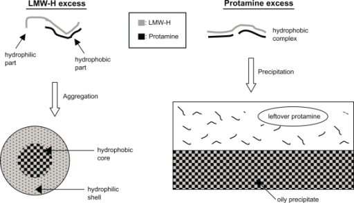 Illustration of LMW-H/P MP and LMW-H/P NP generation by mixing protamine to LMW-H at various ratios.Abbreviations: LMW-H, low-molecular-weight heparin; LMW-H/P, low-molecular-weight heparin/protamine; MP, microparticle; NP, nanoparticle.