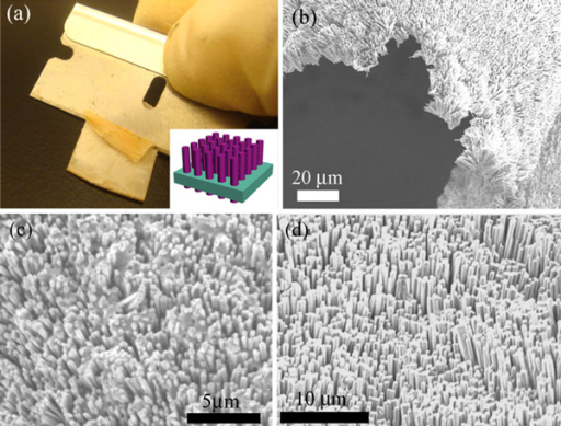 a A photograph showing razor blade peel-off process. Inset: a schematic illustration of ZnO nanowire array embedded in the PDMS matrix. SEM images of b the peeled-off ZnO/PDMS film with good bending ability. c flip-over bottom view of ZnO/PDMS film showing exposed ZnO tails, and d the top view of ZnO/PDMS film transferred onto ITO/PET substrate.