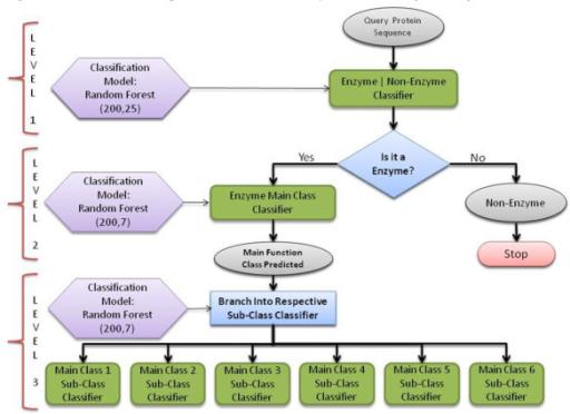 A Flowchart Diagram Of The Three Tier Top Down Model M Open I