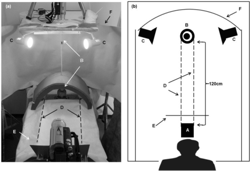 Experimental setup.(A) Oblique view. (B) Schematic overhead view. The experimenter, positioned behind the camera (a) acts as the threatening stimulus. Chameleon (x), vertical pole (b), incandescent bulbs (c), pole rotation cords (d), visual barrier (e), screen (f).