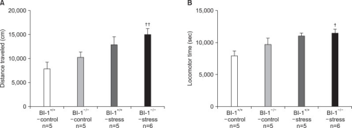 Spontaneous locomotor activities [(A) distance traveled and (B) locomotor time] after 6-week treatment of chronic mild stress. †Significant differences from BI-1+/+-control (†p<0.05, ††p<0.01). BI-1, Bax inhibitor-1.