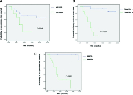 Kaplan–Meier curves showing the difference in PFS between patients with CTCs positive and negative for ALDH1 (A), survivin (B) and MRP5 (C) expression.