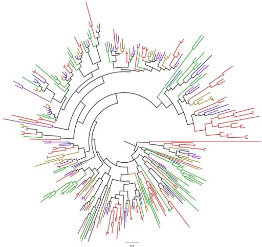 Maximum likelihood dendrogram of PMEIs in flax and related species. Red: Linum usitatissimum; Purple: Manihot esculenta; Blue: Ricinus communis; Orange: Populus trichocarpa; Green: Arabidopsis thaliana. 100 bootstraps and 2 search-replicates (bootstrap values shown in Additional file5: Figure S3).